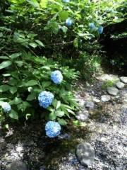 上條かすみ 公式ブログ/癒し写メ 画像1