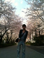 EMI 公式ブログ/桜と私服 画像1