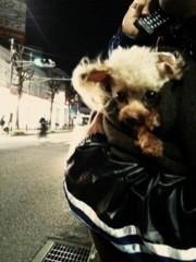EMI 公式ブログ/うにとアロハ〜♪ 画像1