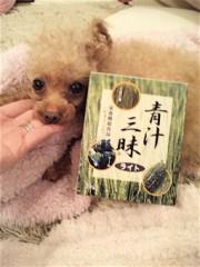 EMI 公式ブログ/お薦めの一品! 画像1