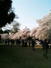 EMI 公式ブログ/新宿御苑 画像2