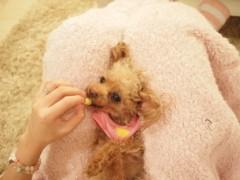 EMI 公式ブログ/おやすみなさい♪ 画像1