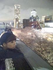 EMI 公式ブログ/お花見♪ 画像1