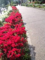 赤城アリア 公式ブログ/日焼け対策と、 画像1