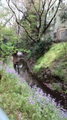 赤城アリア 公式ブログ/東京にもあったのねっ 画像1