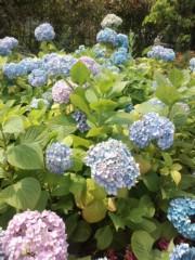 赤城アリア 公式ブログ/かるく 画像1