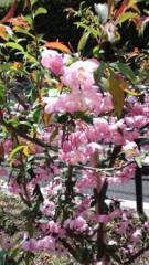 赤城アリア 公式ブログ/はじめましての日 画像1