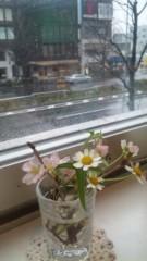 神農幸(じんのさち) 公式ブログ/雪と林檎。 画像1