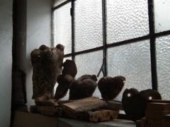 野村佑香 公式ブログ/イタリア小話 伝統を守る街・オルビア BS番組「ぐるっと長靴〜」こぼれ話 画像2