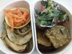 野村佑香 公式ブログ/菜っぱのつけもの 画像1