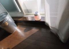 野村佑香 公式ブログ/秋の夜長に太陽の光 画像2