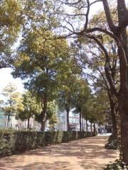 野村佑香 公式ブログ/お店に向かう… 画像1