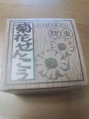 野村佑香 公式ブログ/夏の風物詩 画像1