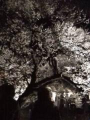 野村佑香 公式ブログ/夜の 画像1