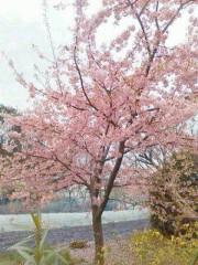 野村佑香 公式ブログ/嬉しい発見☆ 画像1
