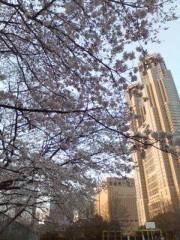 野村佑香 公式ブログ/東京満開 画像1
