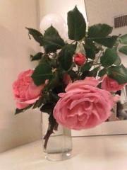 野村佑香 公式ブログ/美佐子さん家の薔薇 画像1