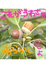 新垣桃菜(JK21) 公式ブログ/あらかし。 画像2