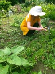 オルリコ 公式ブログ/家庭栽培 画像2