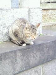 榎本麗美 プライベート画像/23 2010-03-19 17:50:51