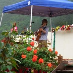カトウトモタカ 公式ブログ/雨じゃなかったらもっと綺麗なんだろうな、一面のバラ。 画像1