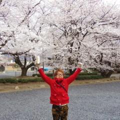 カトウトモタカ 公式ブログ/今日が花見なら、雪見酒ならぬ花雪見酒だったね。 画像1