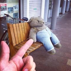 カトウトモタカ 公式ブログ/そりゃ、クマもだる〜んってなるよね、この気温。 画像1
