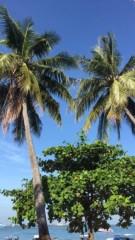 紗綾 公式ブログ/タイに来ています 画像1