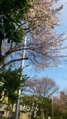 かおる 公式ブログ/春 画像1