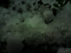 かおる 公式ブログ/雨降って、地固まる 画像1