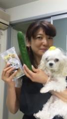 沢田美香 公式ブログ/暑すぎませんか 画像2