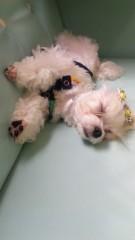 沢田美香 公式ブログ/爆睡か?(笑) 画像2