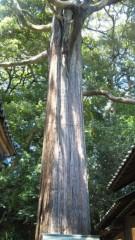 沢田美香 公式ブログ/いざ静岡へ 画像2