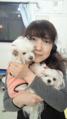 沢田美香 公式ブログ/お守りネイル 画像3