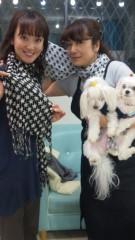 沢田美香 公式ブログ/激安☆巻物 画像1