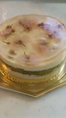 沢田美香 公式ブログ/桜のケーキ♪♪♪ 画像2