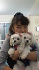 沢田美香 公式ブログ/たまげました!!! 画像1