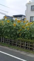 沢田美香 公式ブログ/さらに 画像1