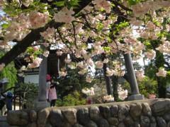 篠崎菜穂子 公式ブログ/バーベキュー♪ 画像3