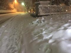 神崎翔 公式ブログ/大雪 画像2