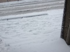 神崎翔 公式ブログ/初雪だね 画像3