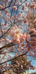 テツ(テツandトモ) 公式ブログ/近くの公園で(*^^*) 画像1