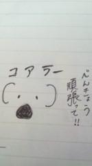 藤麻理亜 公式ブログ/コアラ(−Q−) 画像1