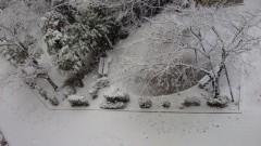 藤麻理亜 公式ブログ/雪の世界★ 画像1
