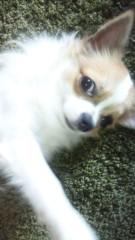 Juliet 公式ブログ/ちょい待って(笑)!! 画像1