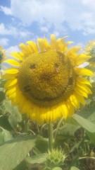 佐々木友里 公式ブログ/わたしのふるさと、ひろしま。 画像1