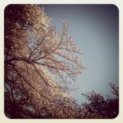 佐々木友里 公式ブログ/念願 画像1