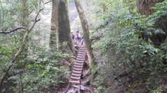 オトナモード 公式ブログ/登山道 画像3