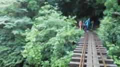 オトナモード 公式ブログ/縄文杉へ朝の森 画像2