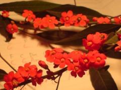 オトナモード 公式ブログ/花とやなせたかしさん 画像2